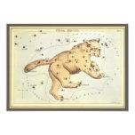 Vintage Astronomy, Ursa Major Constellation, Bear Custom Invite