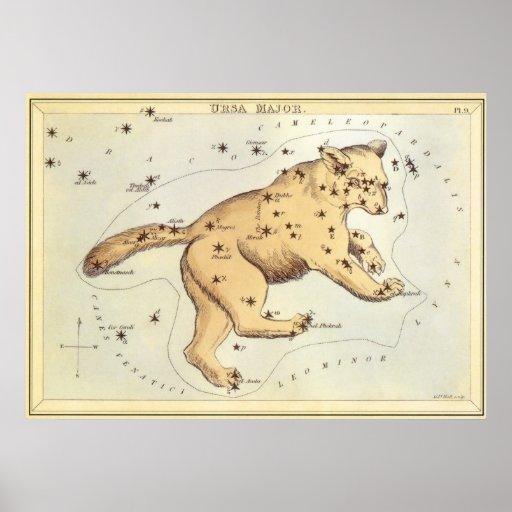 Vintage Astronomy, Ursa Major Constellation, Bear Posters