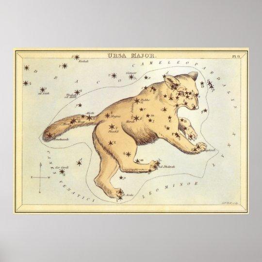 Vintage Astronomy, Ursa Major Constellation, Bear Poster