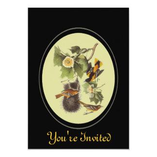 "Vintage Audubon Oriole Birds Nature Invitation 5"" X 7"" Invitation Card"