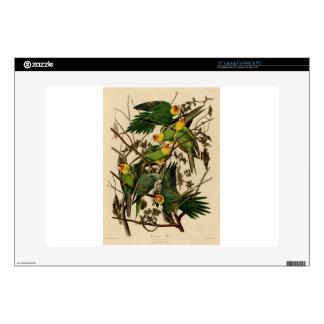 """Vintage Audubon Parrot Decal For 15"""" Laptop"""