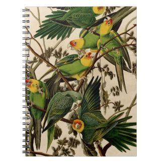 Vintage Audubon Parrot Spiral Notebook