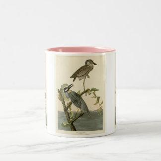 Vintage Audubon's Yellow crowned night heron paint Two-Tone Coffee Mug