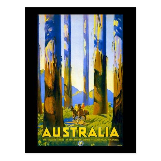 Vintage Australia Marysville Victoria Postcard