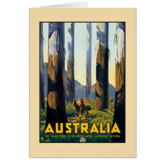 Vintage Australia travel tall trees Marysville VIC Card