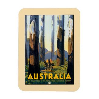 Vintage Australia travel tall trees Marysville VIC Rectangular Photo Magnet