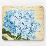 Vintage azul de la flor del Hydrangea botánico Mouse Pad