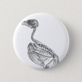 Vintage baby bird skeleton etching pinback button