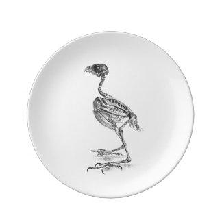 Vintage baby bird skeleton etching plate