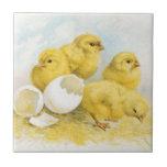 Vintage Baby Chickens Ceramic Tile
