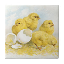 Vintage Baby Chickens Ceramic Tile