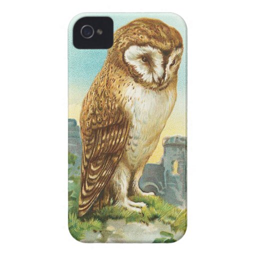 Vintage Barn Owl iPhone 4 Case
