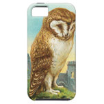 Vintage Barn Owl iPhone 5 Cases