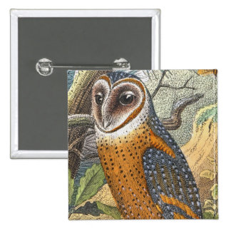 Vintage Barn Owl Painting Button