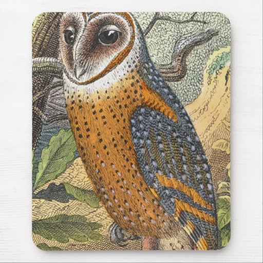 Vintage Barn Owl Painting Mouse Pad from Zazzle.