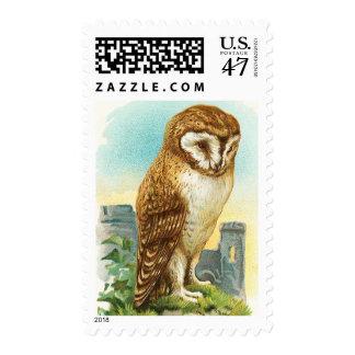 Vintage Barn Owl Postage