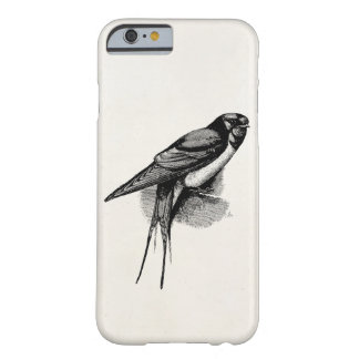 Vintage Barn Swallow Swift Bird Illustration Barely There iPhone 6 Case