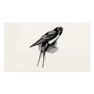 Vintage Barn Swallow Swift Bird Illustration Double-Sided Standard Business Cards (Pack Of 100)