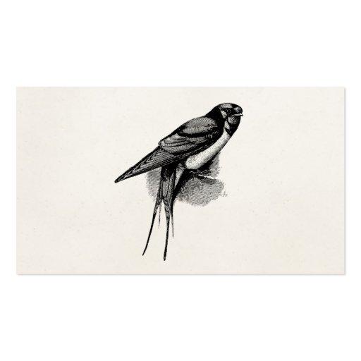 Vintage Barn Swallow Swift Bird Illustration Business Card