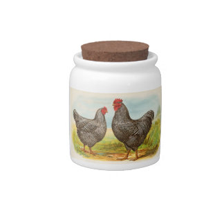 Vintage Barred Plymouth Rock Chickens Candy Dish