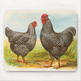 Vintage Barred Plymouth Rock Chickens Mousepad
