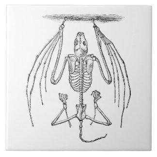 Vintage Bat Skeleton- Bats and Halloween Template Ceramic Tile