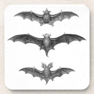 Vintage Bats Gothic Horror Punk Coaster Set