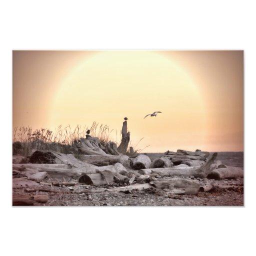 Vintage Beach Scene Art Photo