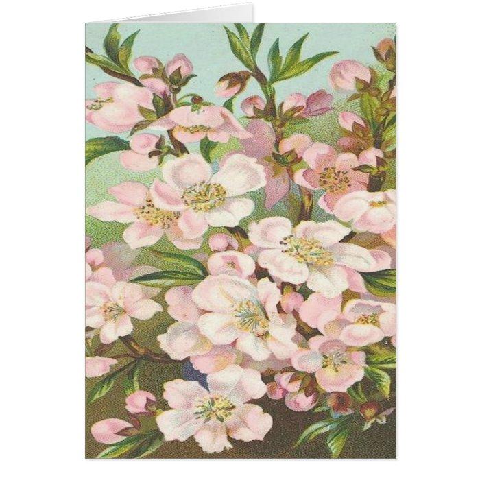 Vintage, Beautiful Light Pink Flowers Card