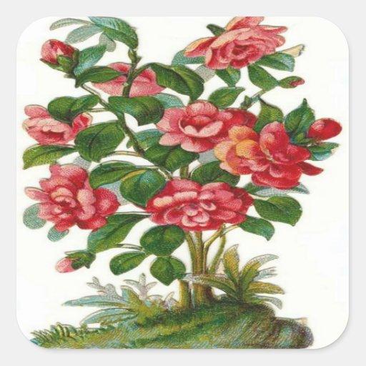 Vintage, Beautiful Pink Flowers Stickers