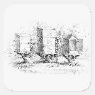 Vintage Bee Boxes Honey Square Sticker
