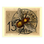 Vintage Bee Collage Postcard
