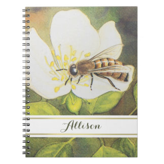 Vintage Bee On A White Flower Illustration Notebook