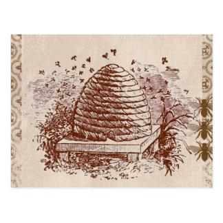 Vintage Beehive Beekeeping Postcard