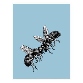vintage beekeeper postcard