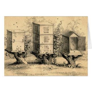 Vintage Beekeeping Beehives Beehive Card