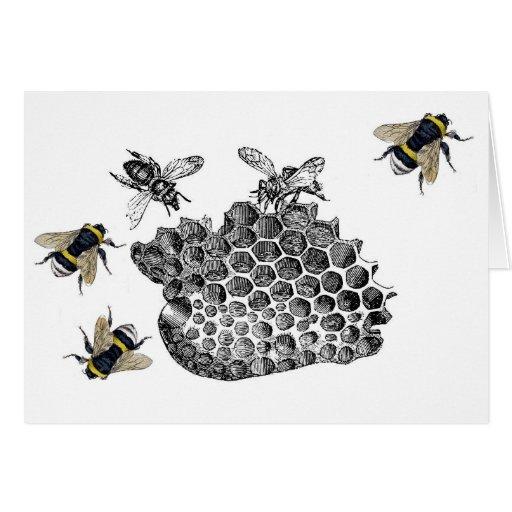 Vintage Bees Cards