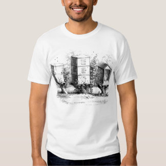 vintage bees hives black, white sketch tshirt