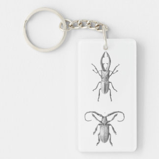 Vintage beetle illustration keychain