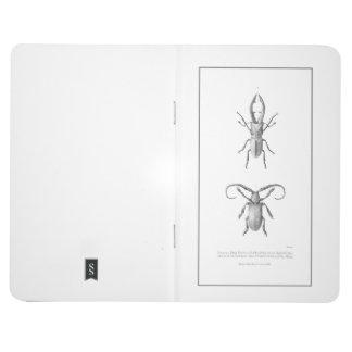 Vintage beetle illustration otebook journal