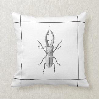 Vintage beetle illustration pillow