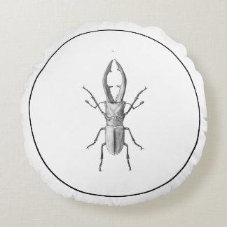 Vintage beetle illustration pillow round pillow