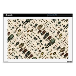 Vintage Beetle Illustration Skin For Laptop