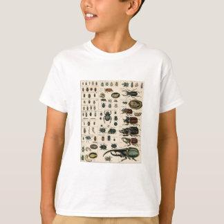 Vintage Beetle Illustration T-Shirt