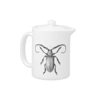 Vintage beetle illustration teapot