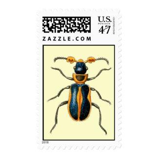 Vintage Beetle Postage