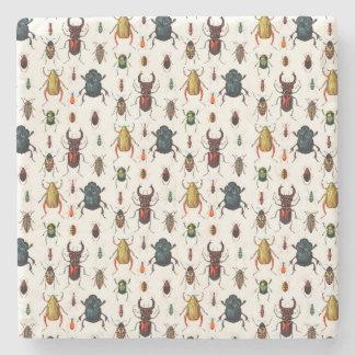 Vintage Beetles Stone Coaster