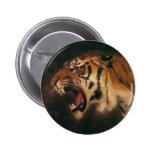 Vintage Bengal Tiger Big Cat Roaring, Wild Animal 2 Inch Round Button