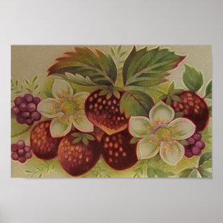Vintage Berries Posters