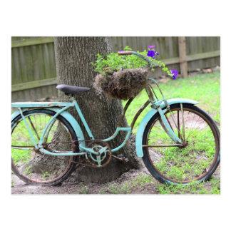 Vintage Bike Flower Basket  Bicycle in the Garden Postcard